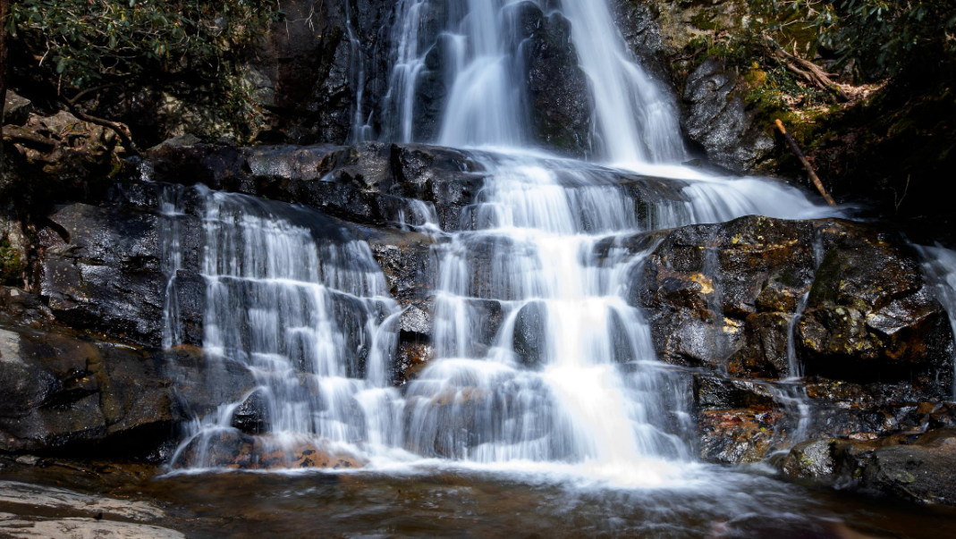 Reasons to Vacation in the Smokies Today blog image #2