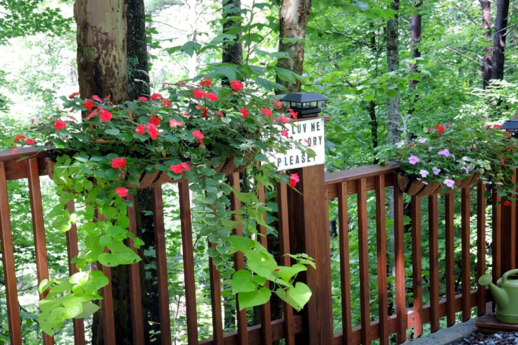 Vacation Rental Property in Gatlinburg, Tennessee - Gallery Image #15