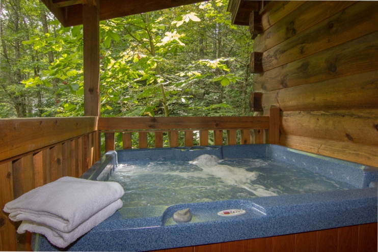 Vacation Rental Property in Gatlinburg, Tennessee - Gallery Image #22