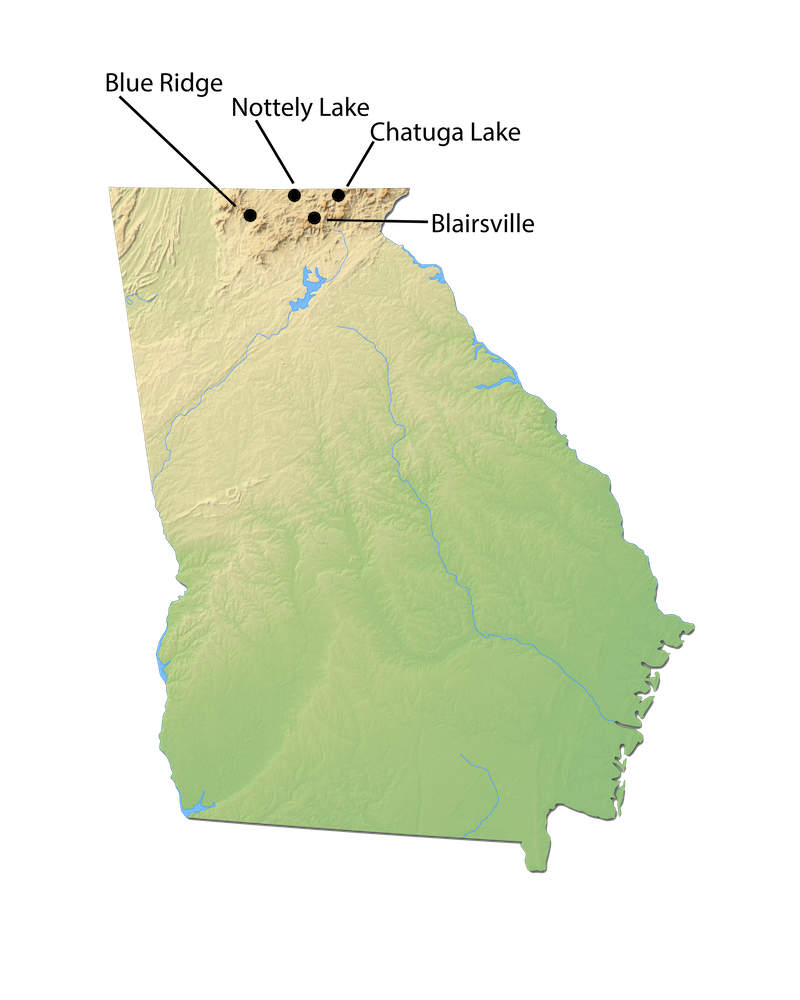 Georgia City Map for Cabin Rentals